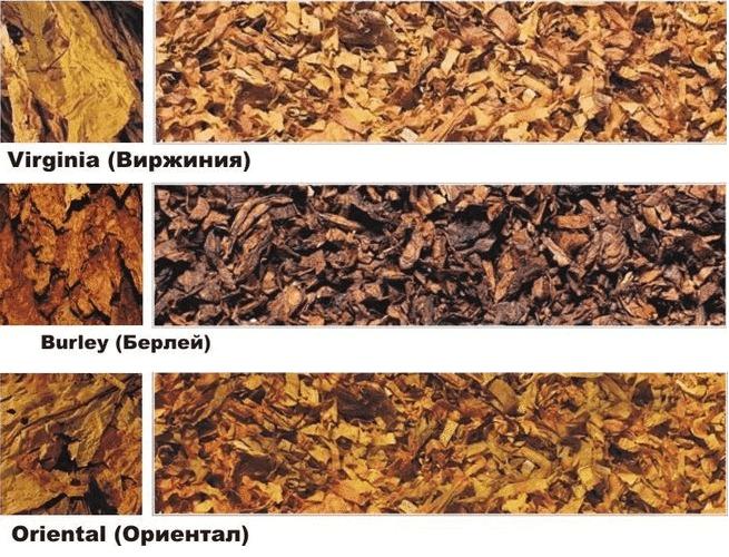 Табак и смеси. Основы